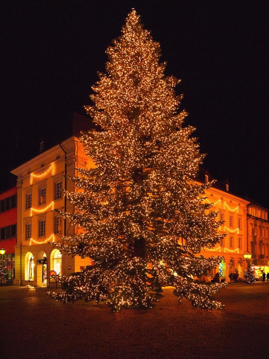 fotos weihnachtsmarkt offenburg rathaus weihnachtsbaum. Black Bedroom Furniture Sets. Home Design Ideas